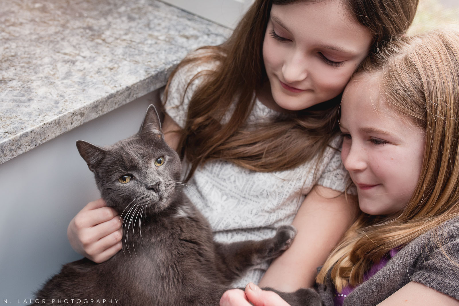 The family cat getting some love. Editorial-style family session by N. Lalor Photography. Darien, CT.
