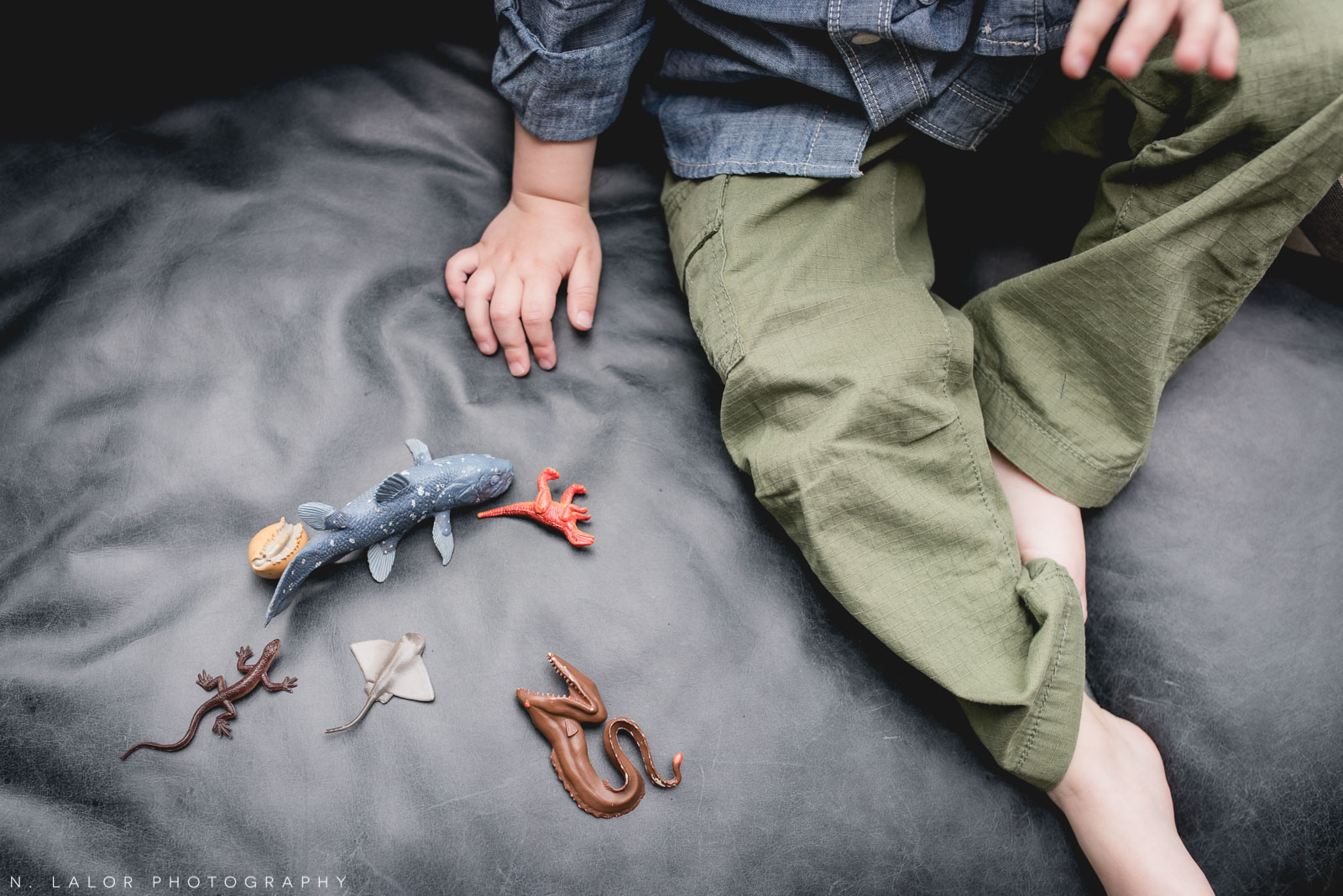 A little boy and his interests. Lifestyle family session by N. Lalor Photography.