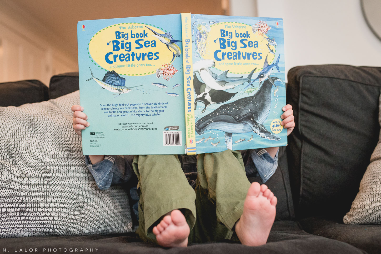 Big sea creature book for a little boy. Lifestyle family session by N. Lalor Photography.