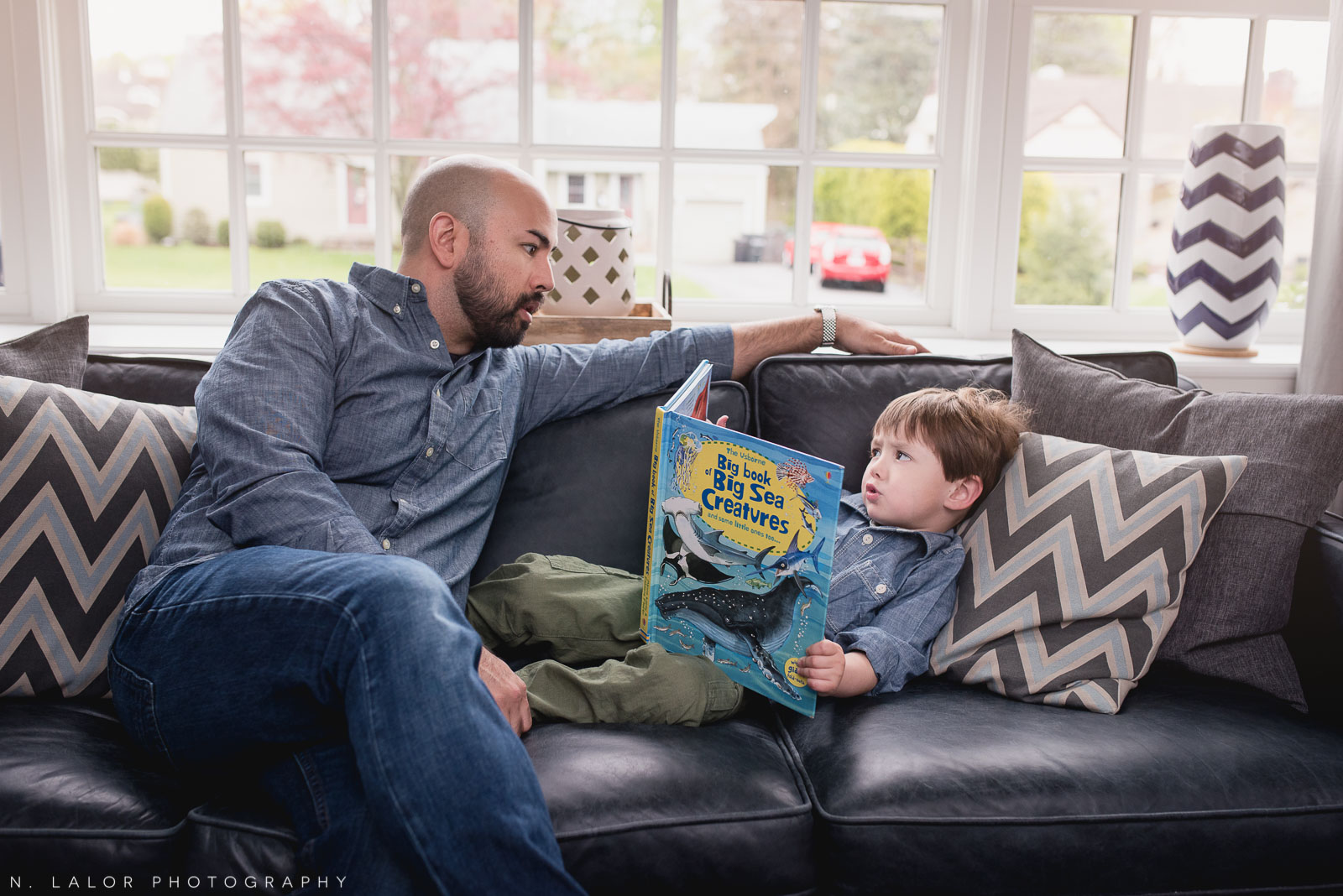 Father and son, on the couch. Lifestyle family session by N. Lalor Photography.