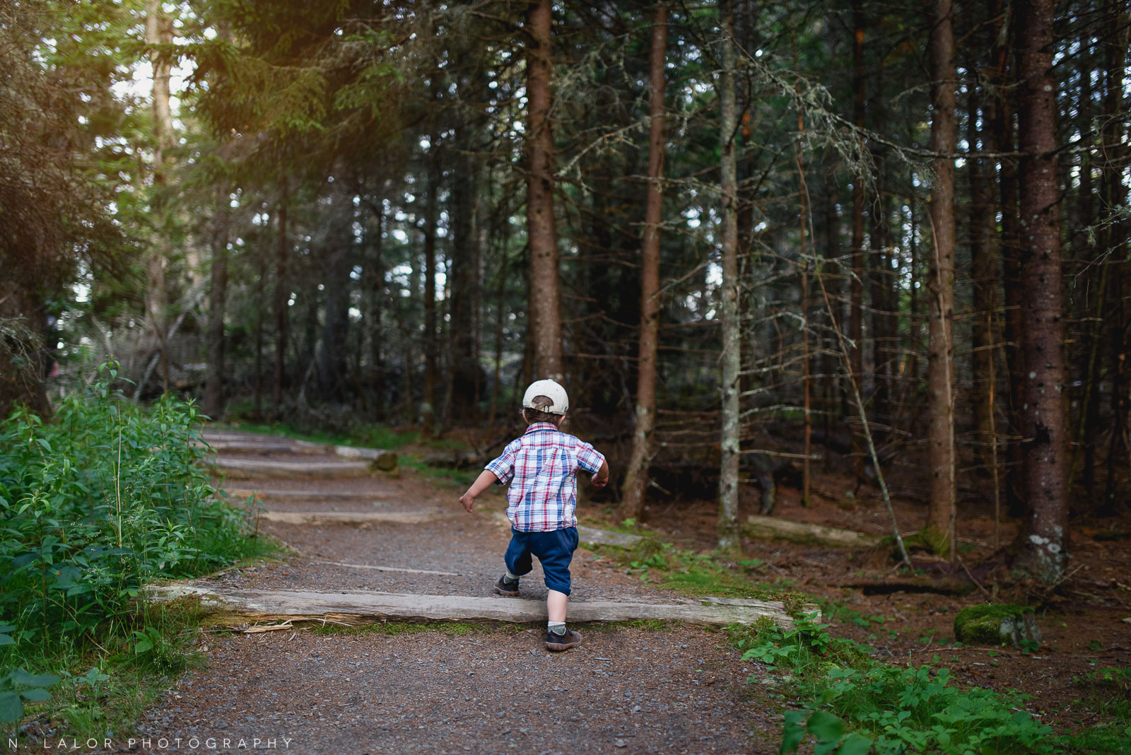 Toddler hiking. Acadia National Park in Bar Harbor Maine. Photo by N Lalor Photography.