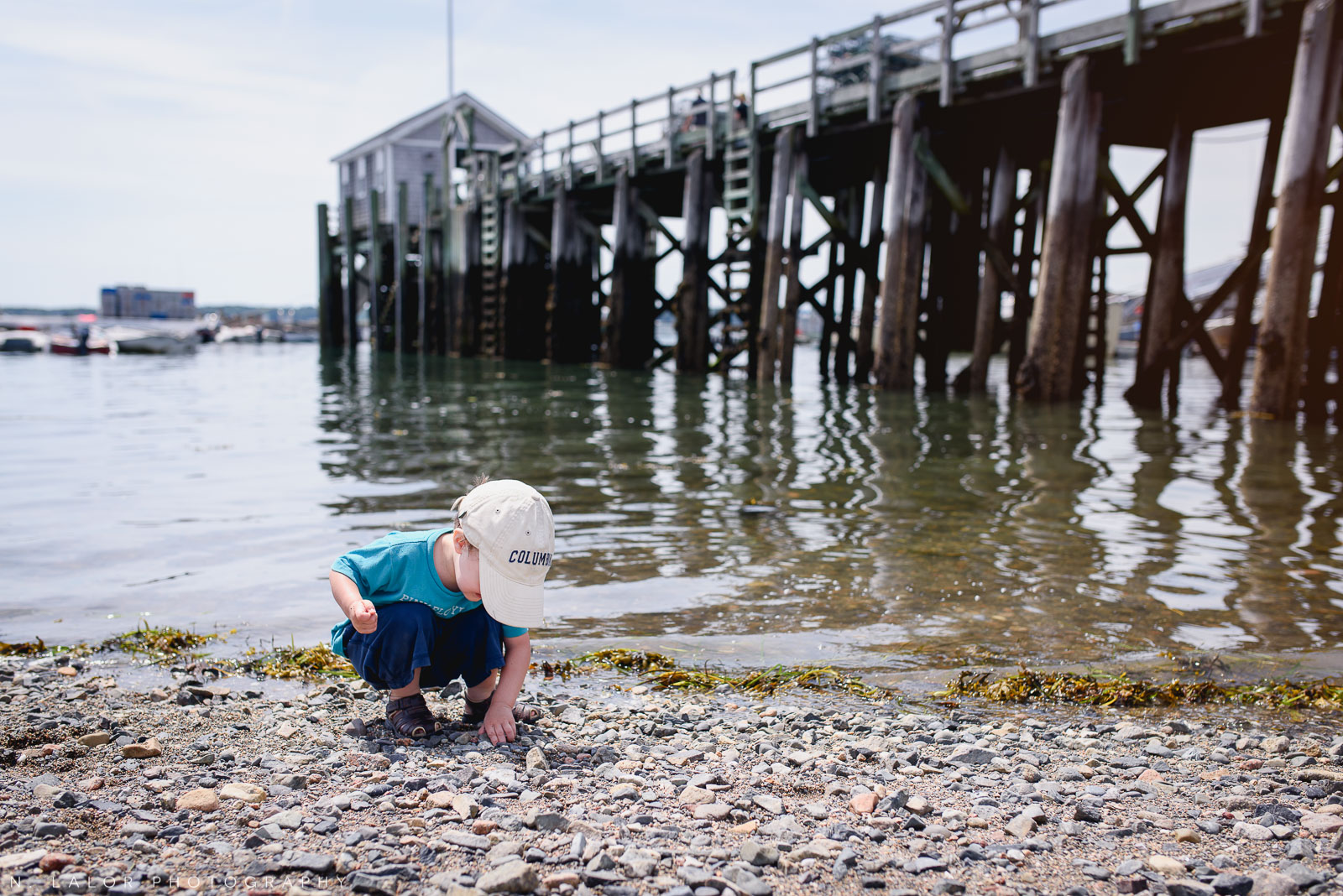 Toddler's favorite pastime, rocks! Little Cranberry Island, Maine. Photo by N Lalor Photography.