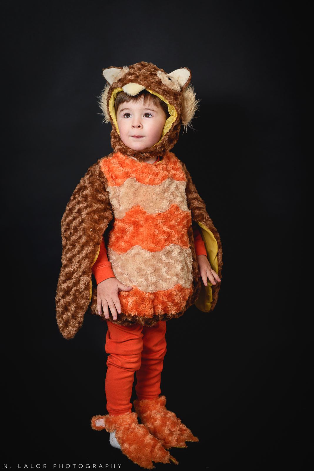 Toddler owl costume. Kids Halloween costume portrait by N. Lalor Photography in Greenwich, Connecticut.