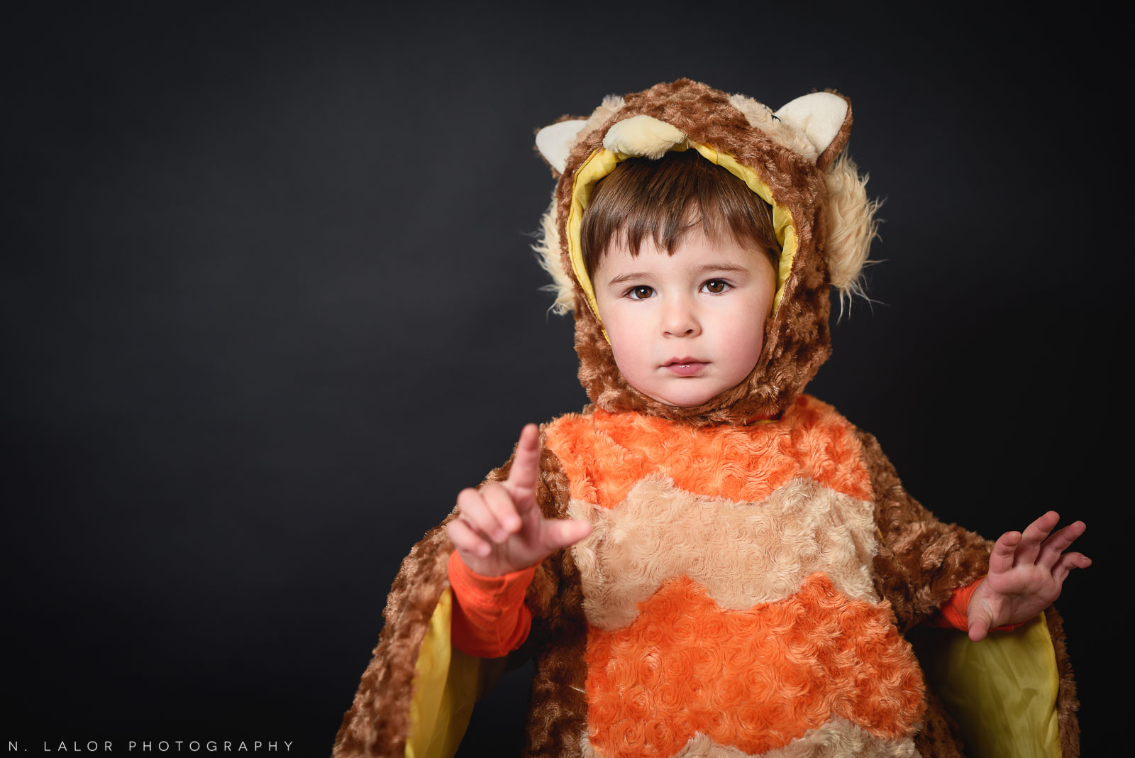 Little owl! Kids Halloween costume portrait by N. Lalor Photography in Greenwich, Connecticut.