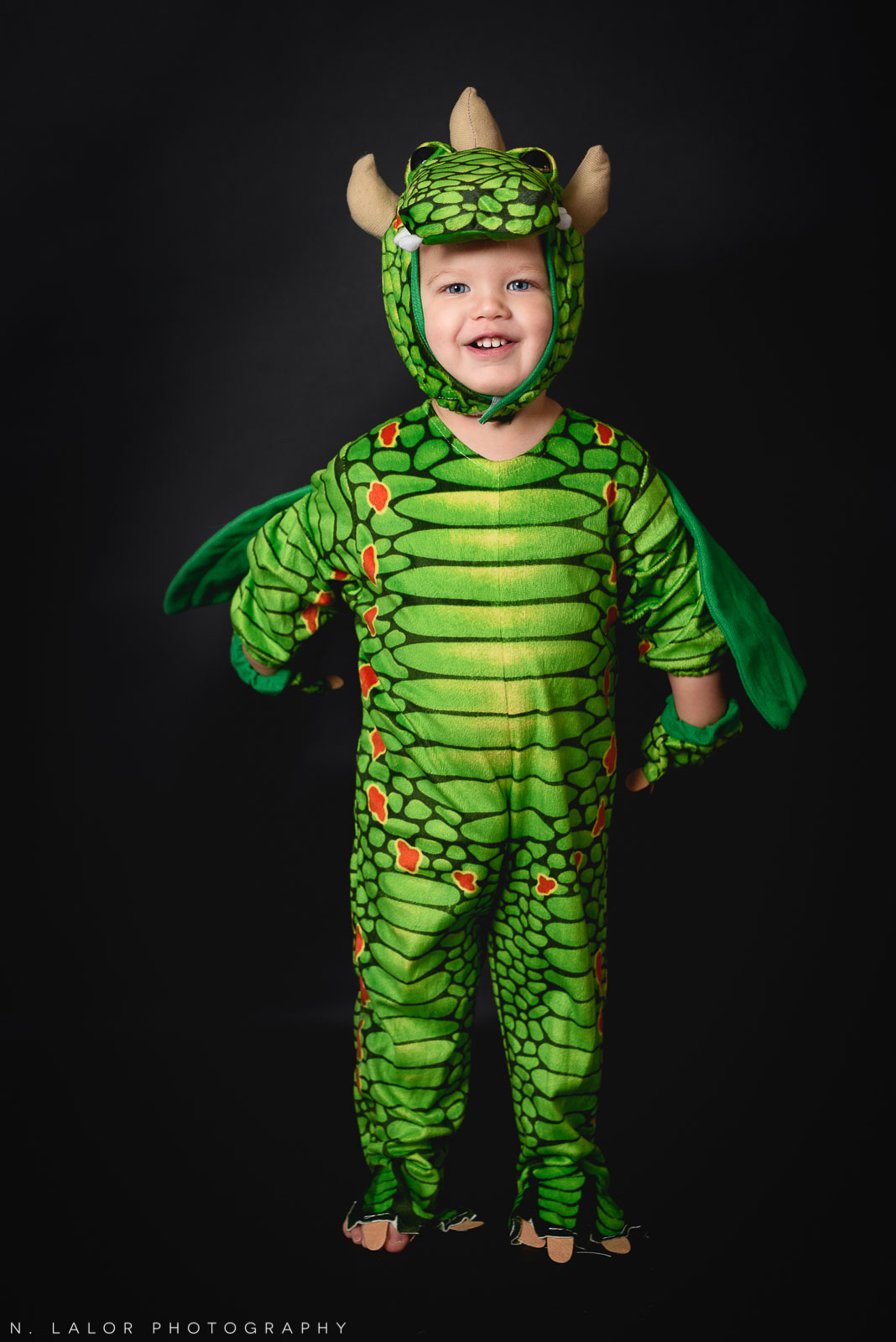 Toddler dragon costume! Kids Halloween costume portrait by N. Lalor Photography in Greenwich, Connecticut.