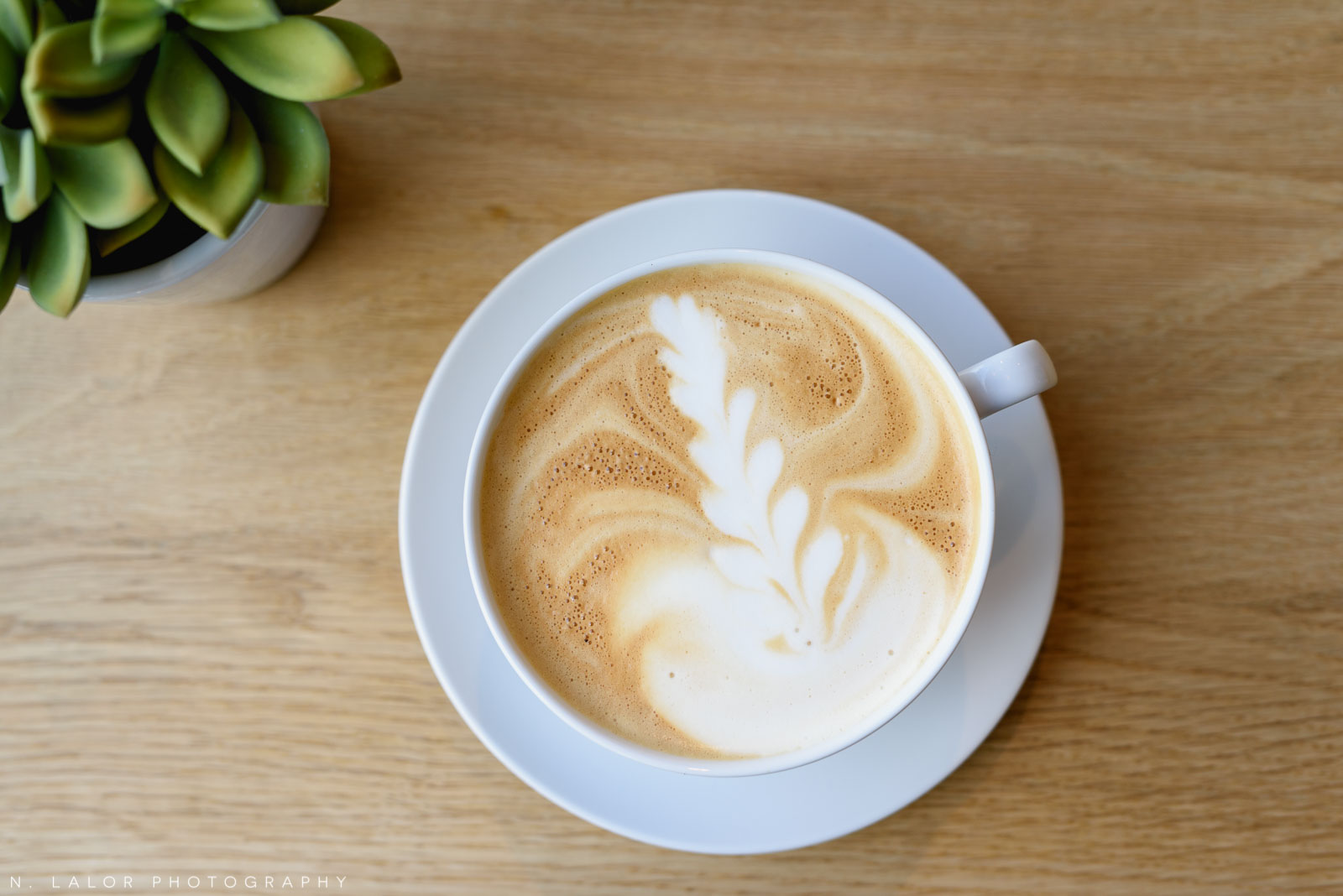 Latte art. Roost Darien, small business photos by N. Lalor Photography.