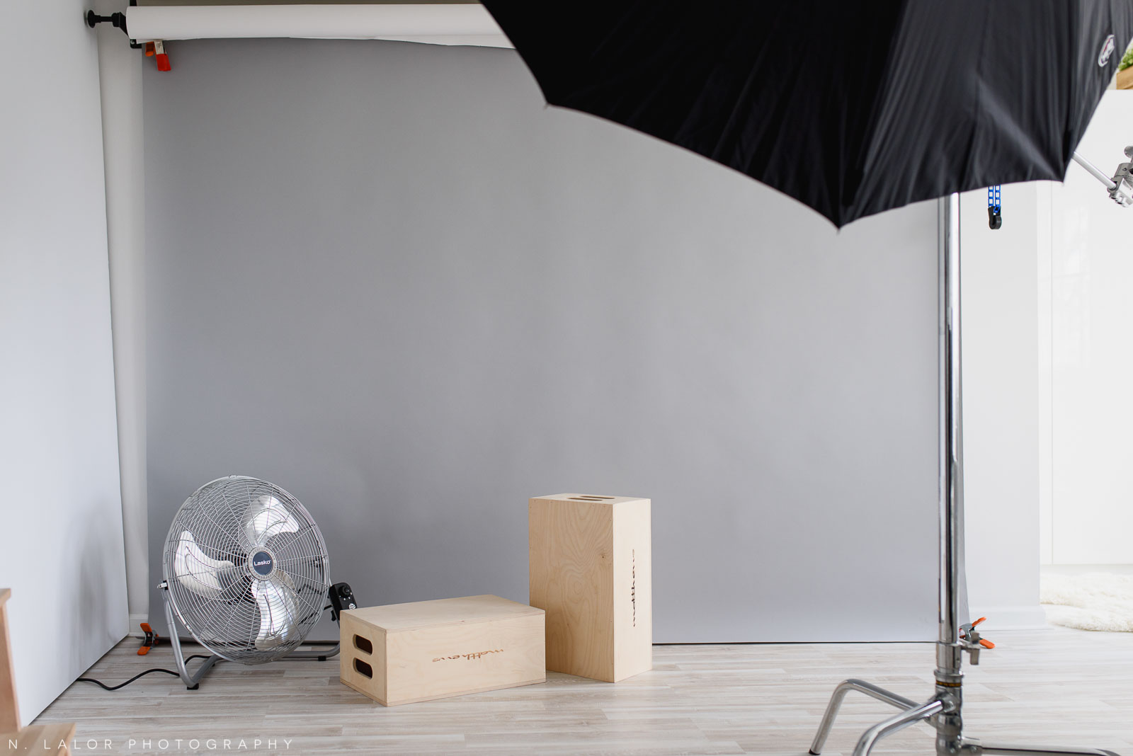 N. Lalor Photography Studio - shooting space, showing backdrop, posing boxes, fan, and light stand.