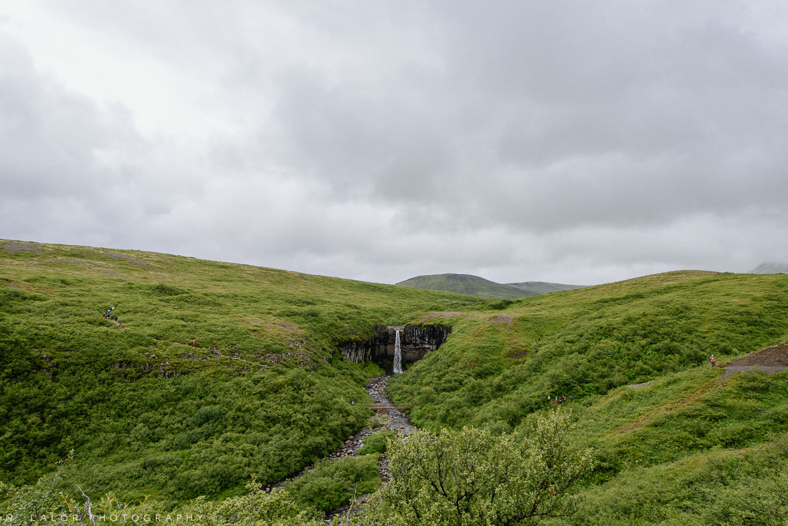 The hike to see Svartifoss (waterfall). From my trip to Iceland in 2018. Photograph by Nataliya Lalor.