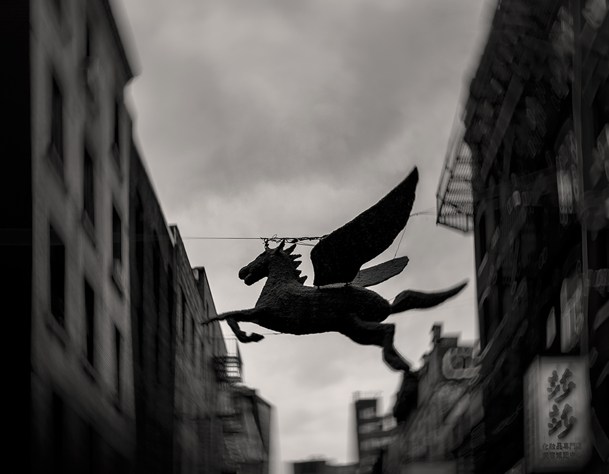 The Flying Horse Chinatown 2019 New York City Contemporary Fine Art Photography Limited Edition New York City Photographs