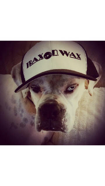 Trax on Wax Trucker Hats