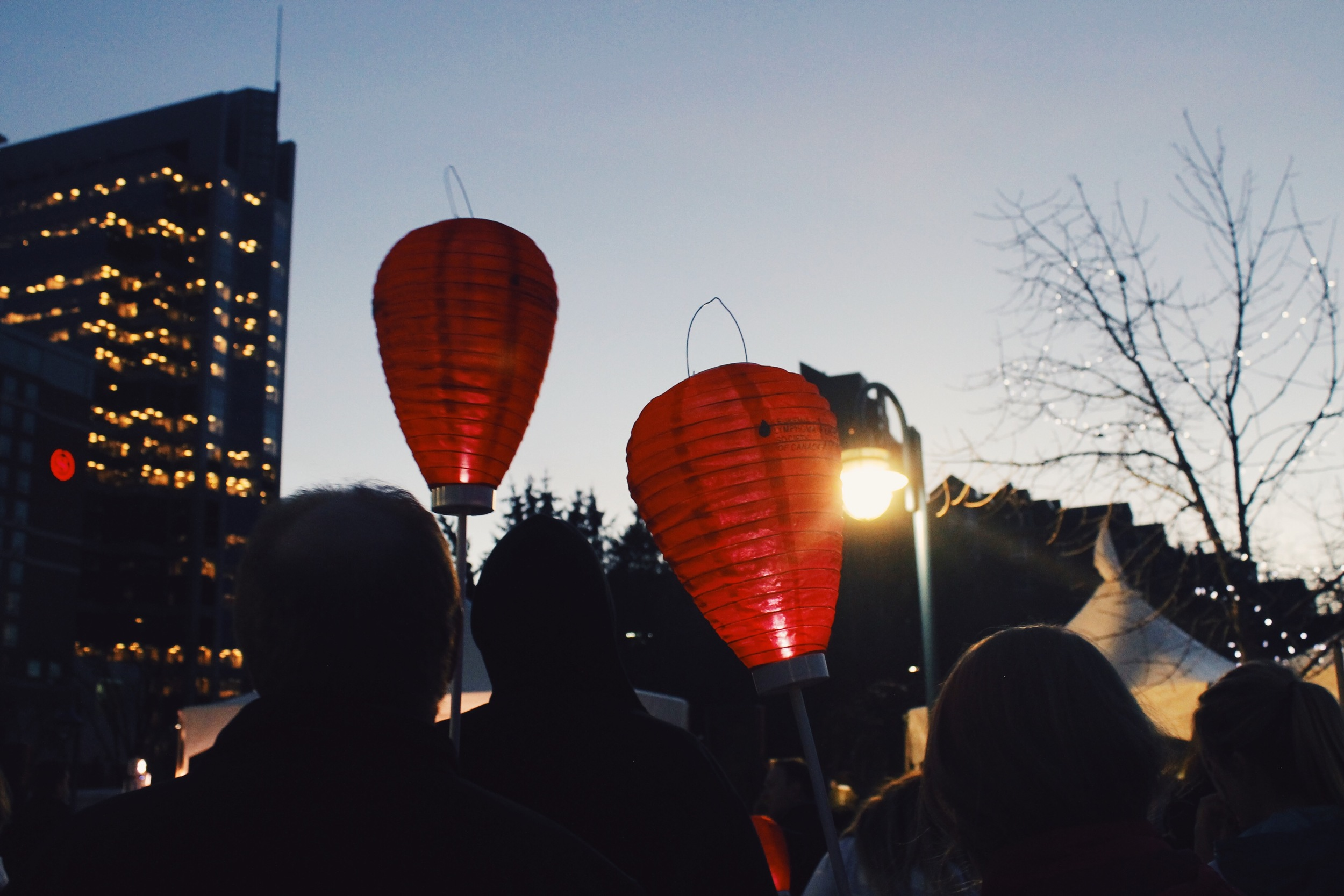 Calgary, AB: Light The Night Walk 2015