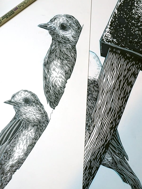 Original drawings for the poster
