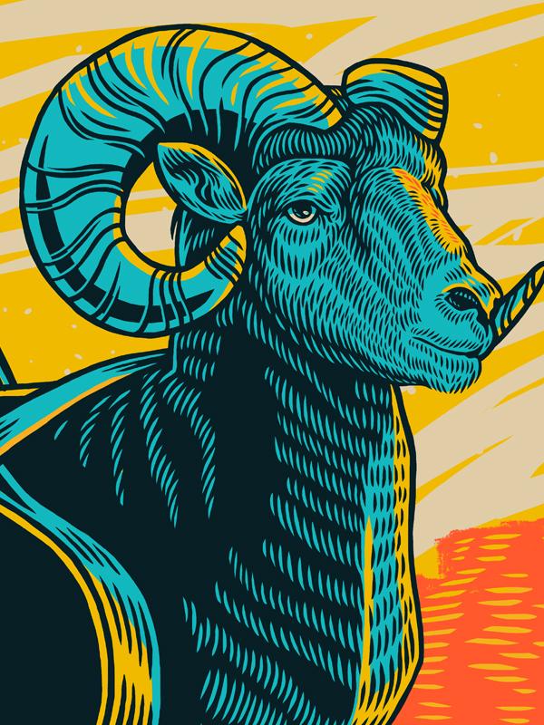 Detail of Big Horn Poster