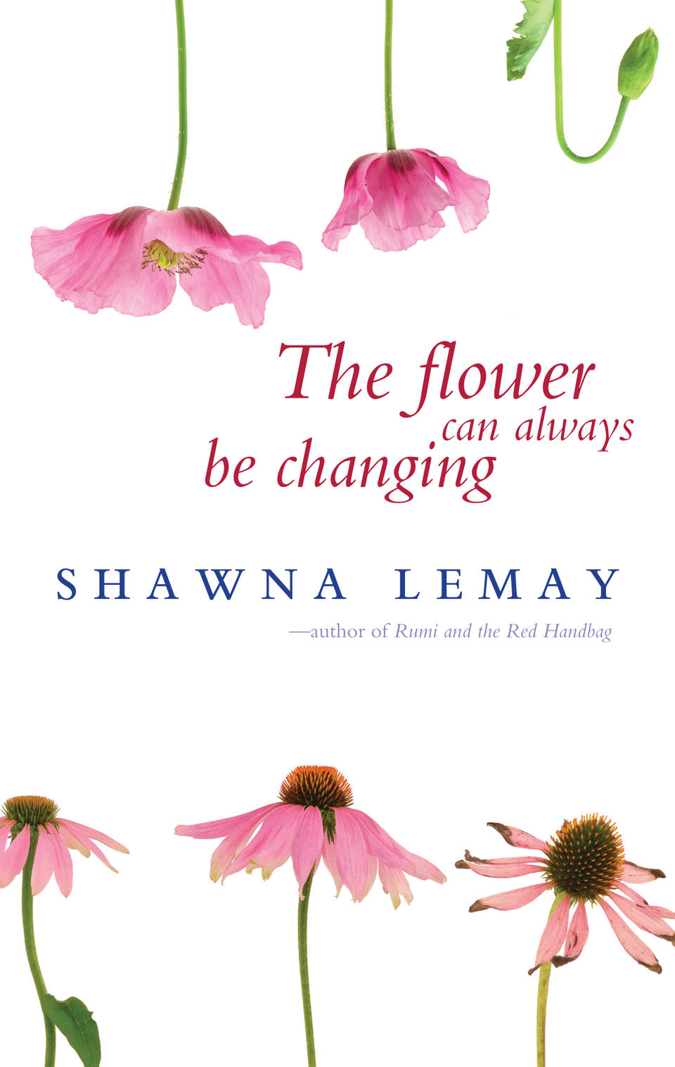 the flower can always be changing lemay
