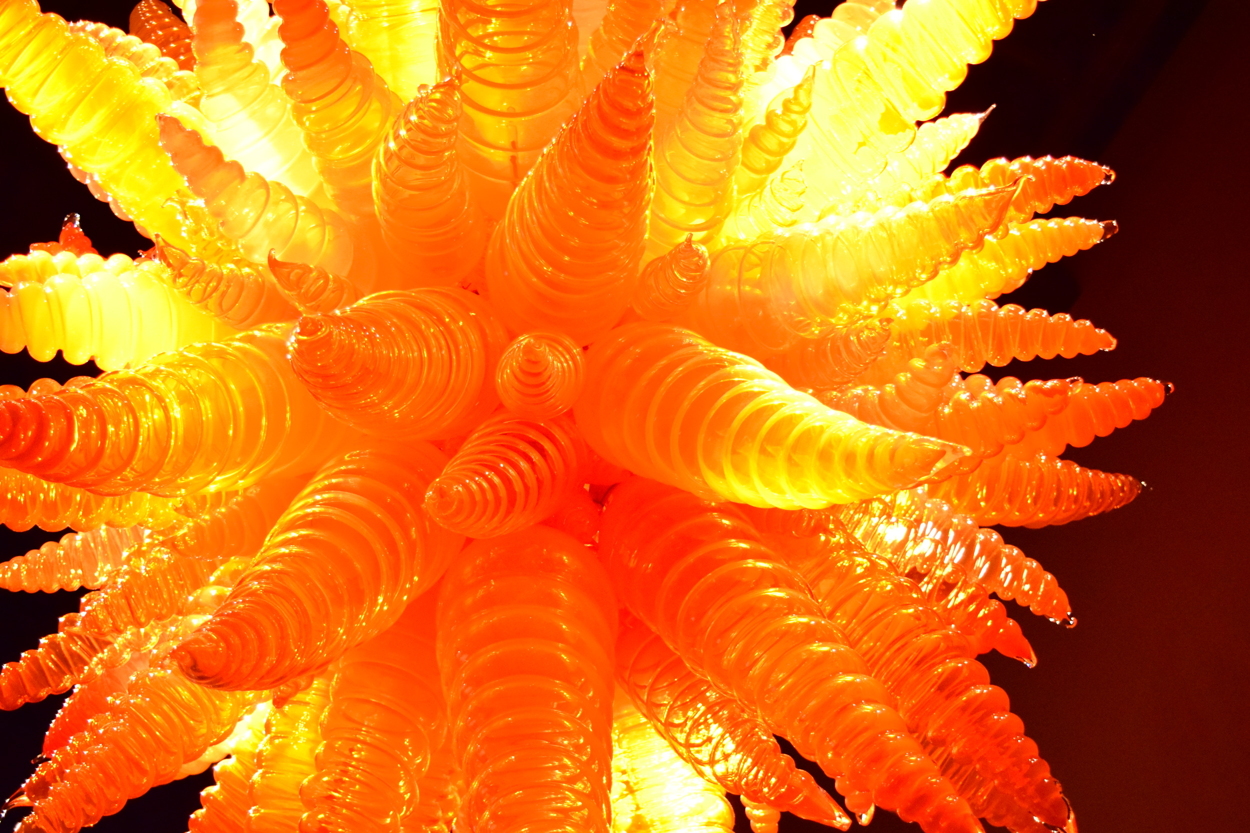 chihuly-glass-garden-orange-chandelier