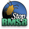 Stop the Brown Marmorated Stink Bug