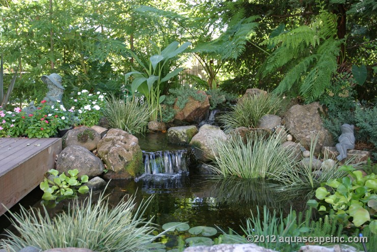 Relax by your water feature - we can create you oasis in as little as one day!