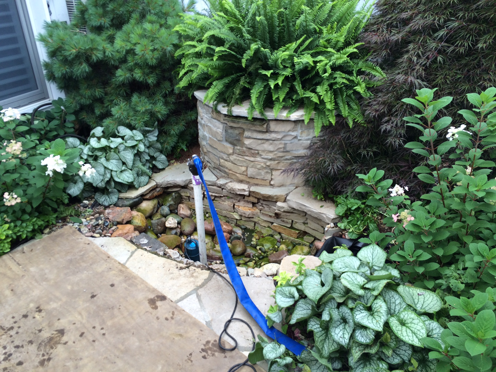 Make your pond functional and beautiful again! Call Waterpaw Ponds to repair your pond.