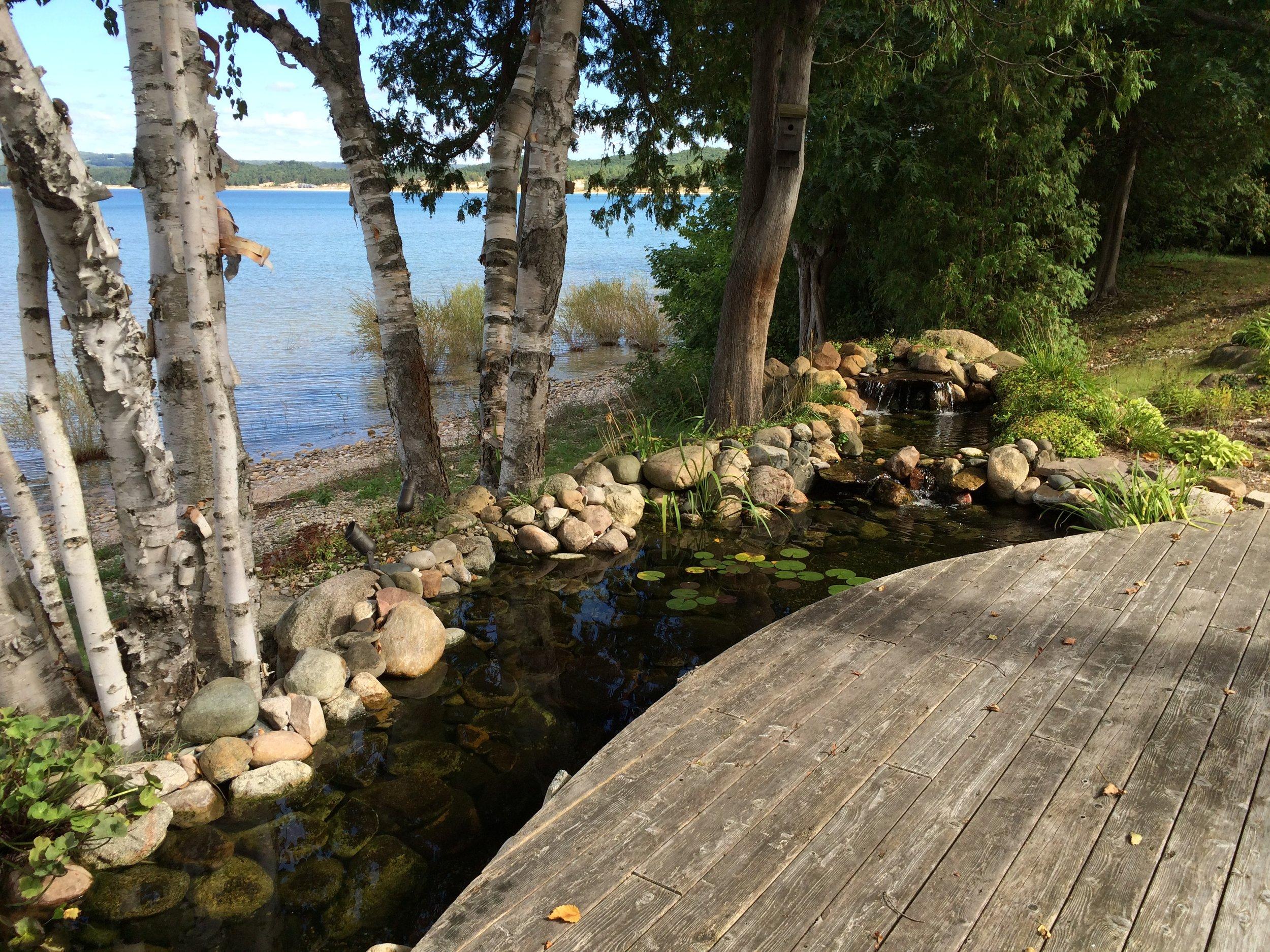 lakeshorepond.jpg