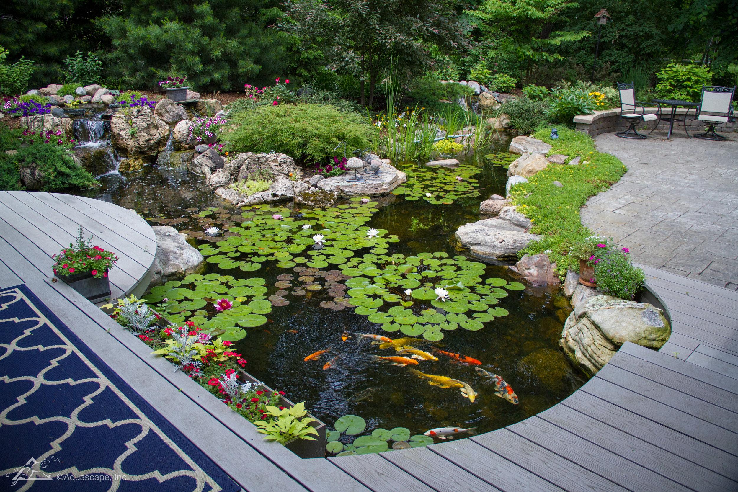 Large 21x26 Pond_03.jpg