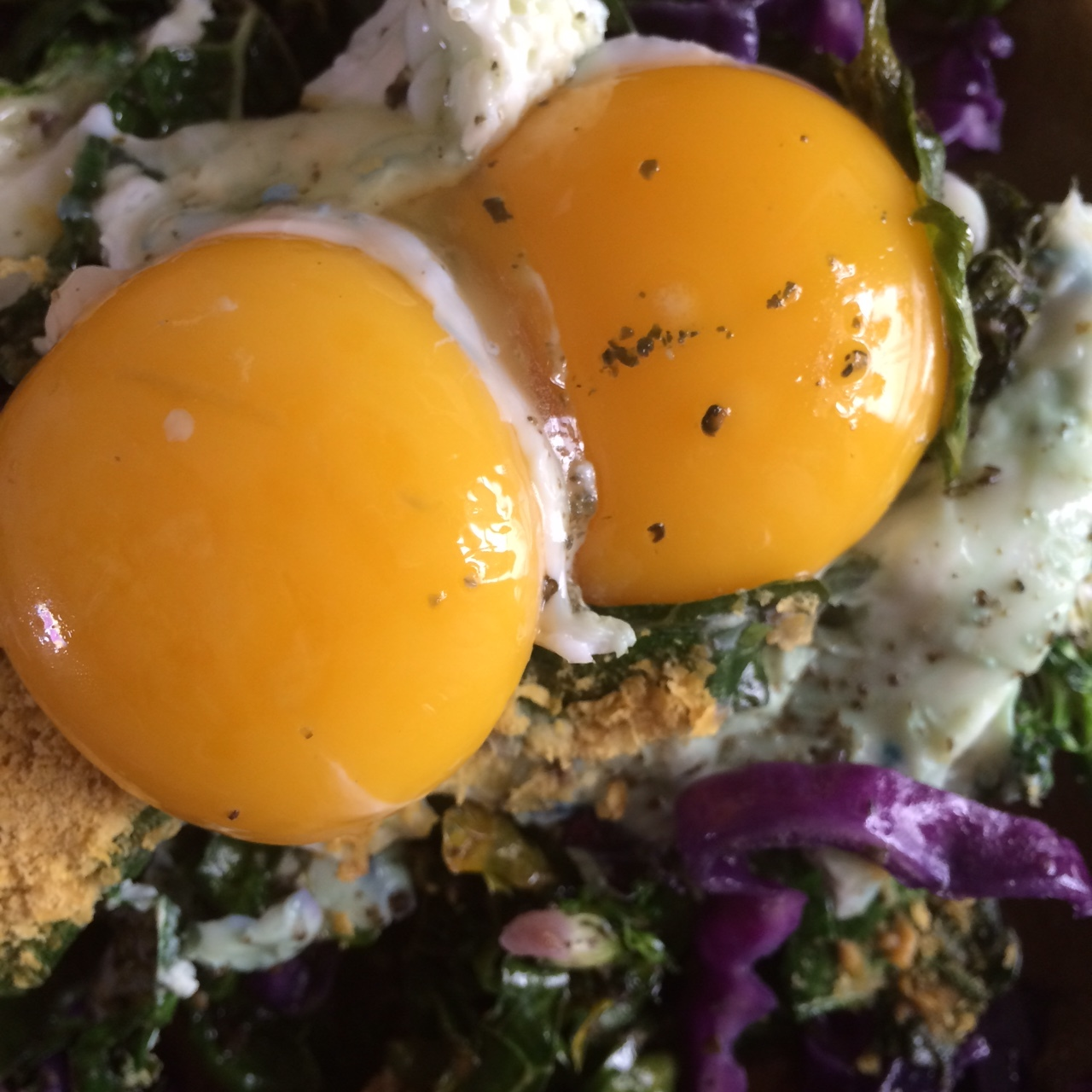 Would you eat raw egg yolks? — NATIVE PALMS NUTRITION