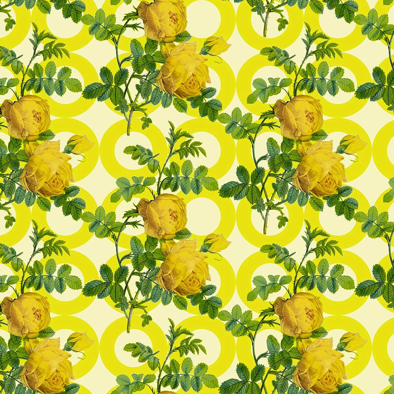 MIMI-saffron.jpg