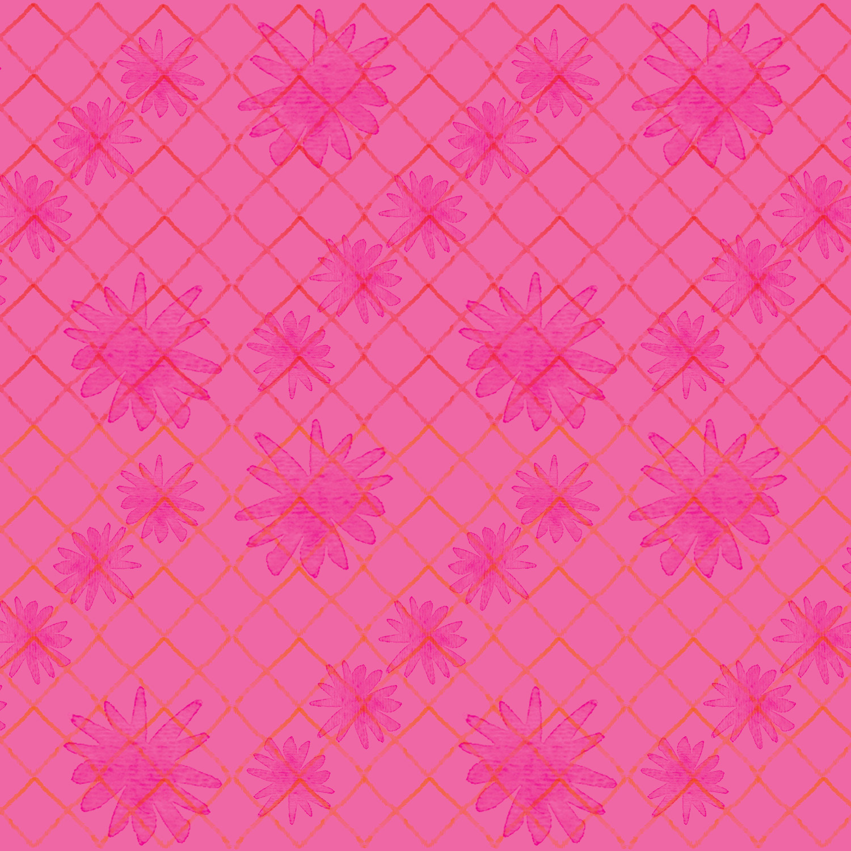 LITTLE-NORA-raspberry.jpg