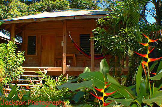 2 Bedroom cabin, hostel style, beachfront, West End, Roatan