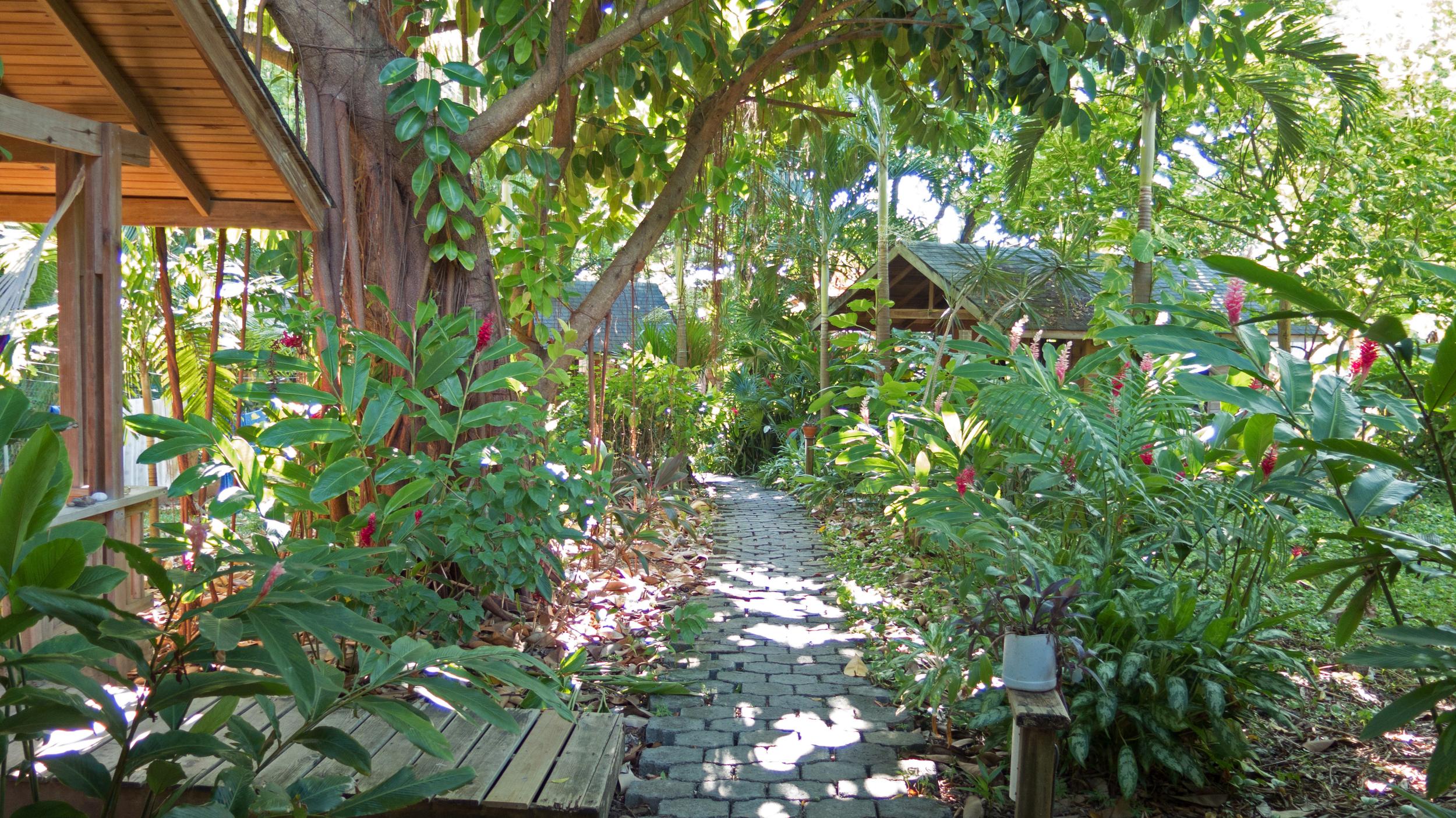 Garden path, Hotel Chillies, West End, Roatan