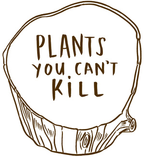 plants_logo_brown.jpg
