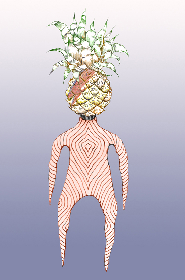 Pineapple Bowie, Carolyn Tripp, 2016