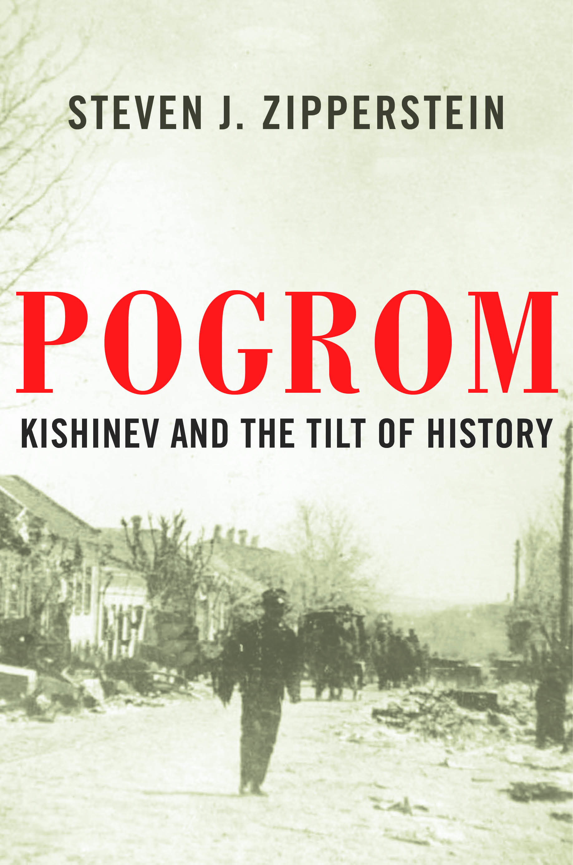 Pogrom_978-1-63149-269-3.jpg