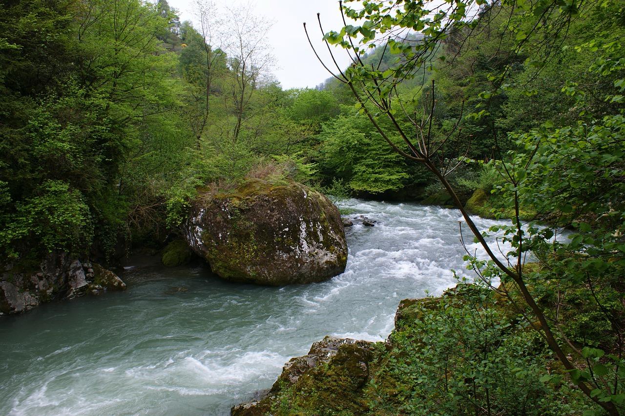 georgia-105735_1280.jpg