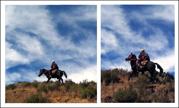 caballo_492582559_o.jpg
