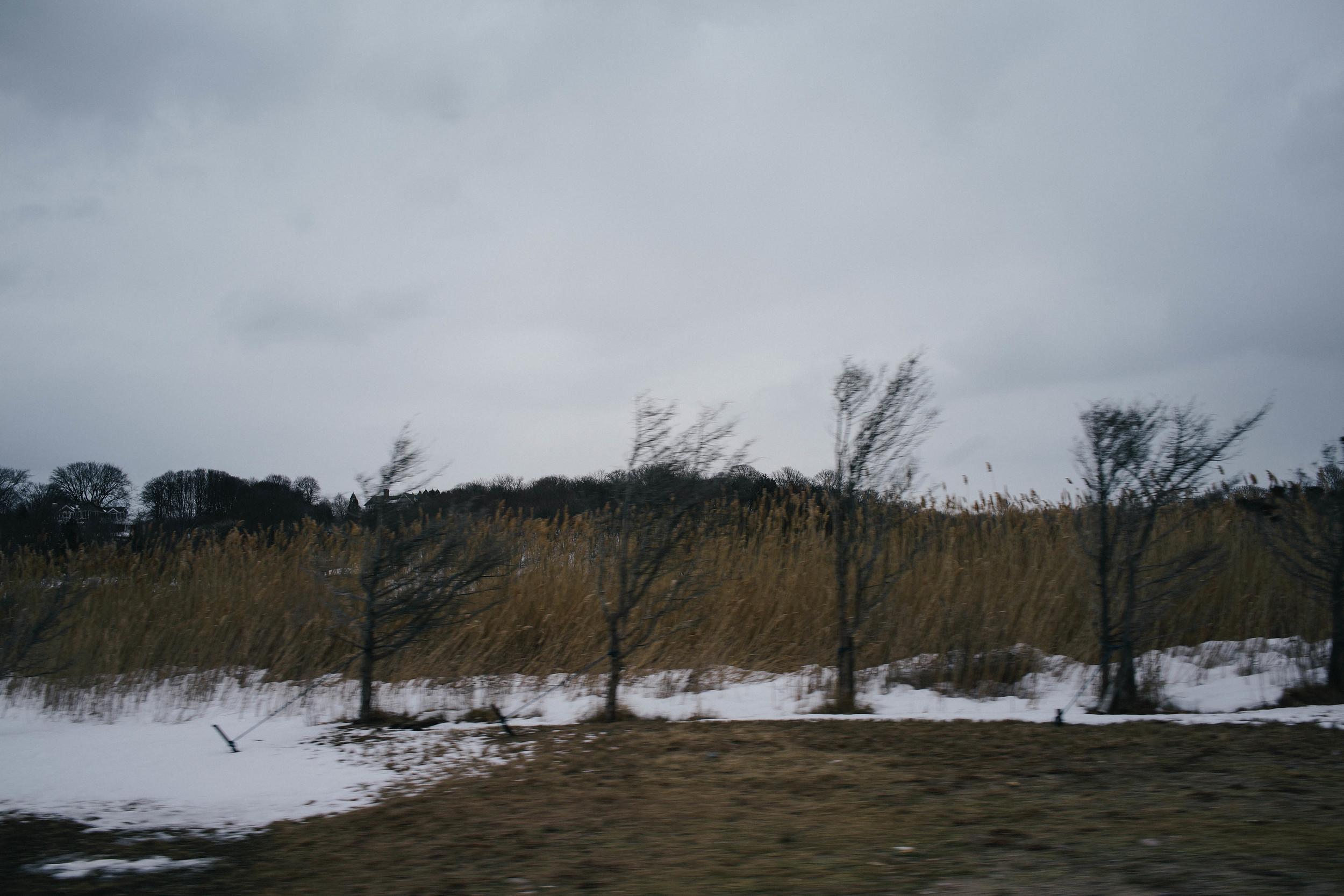 Montauk-04947.jpg
