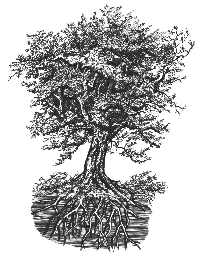 Matt's Tree copy 2-3.jpg
