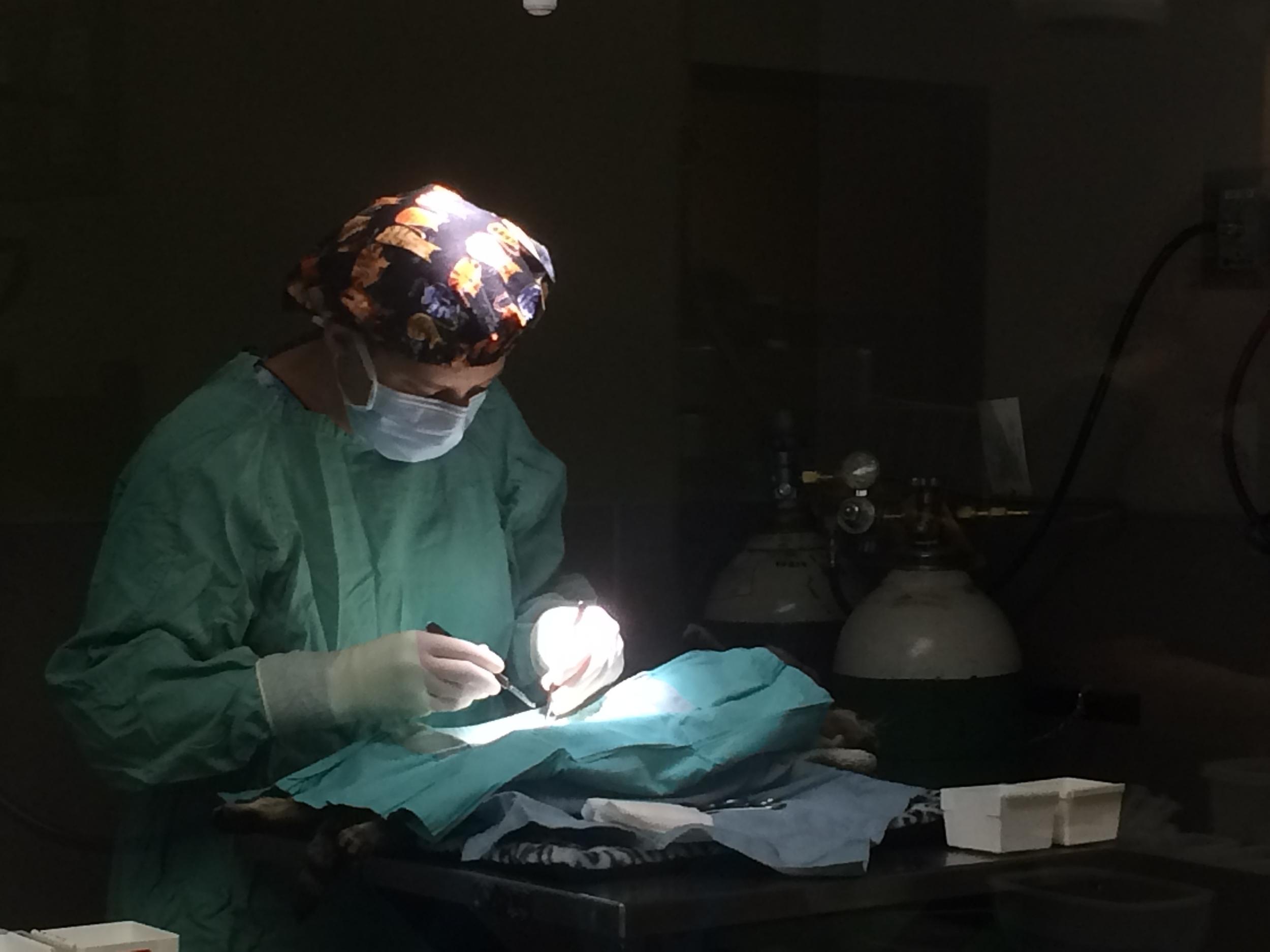 1st clinic-1st sx.JPG