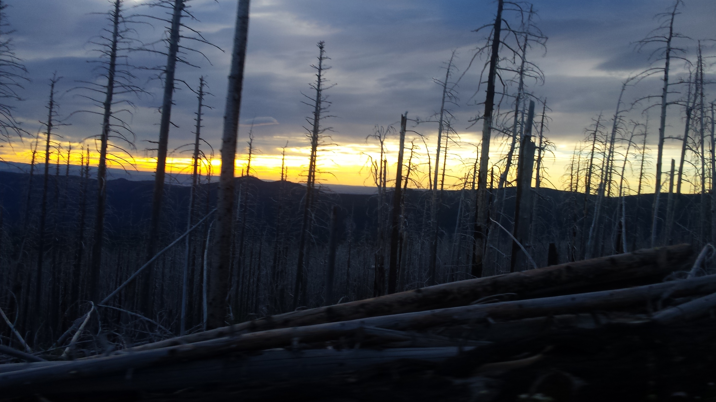 Sunset finish