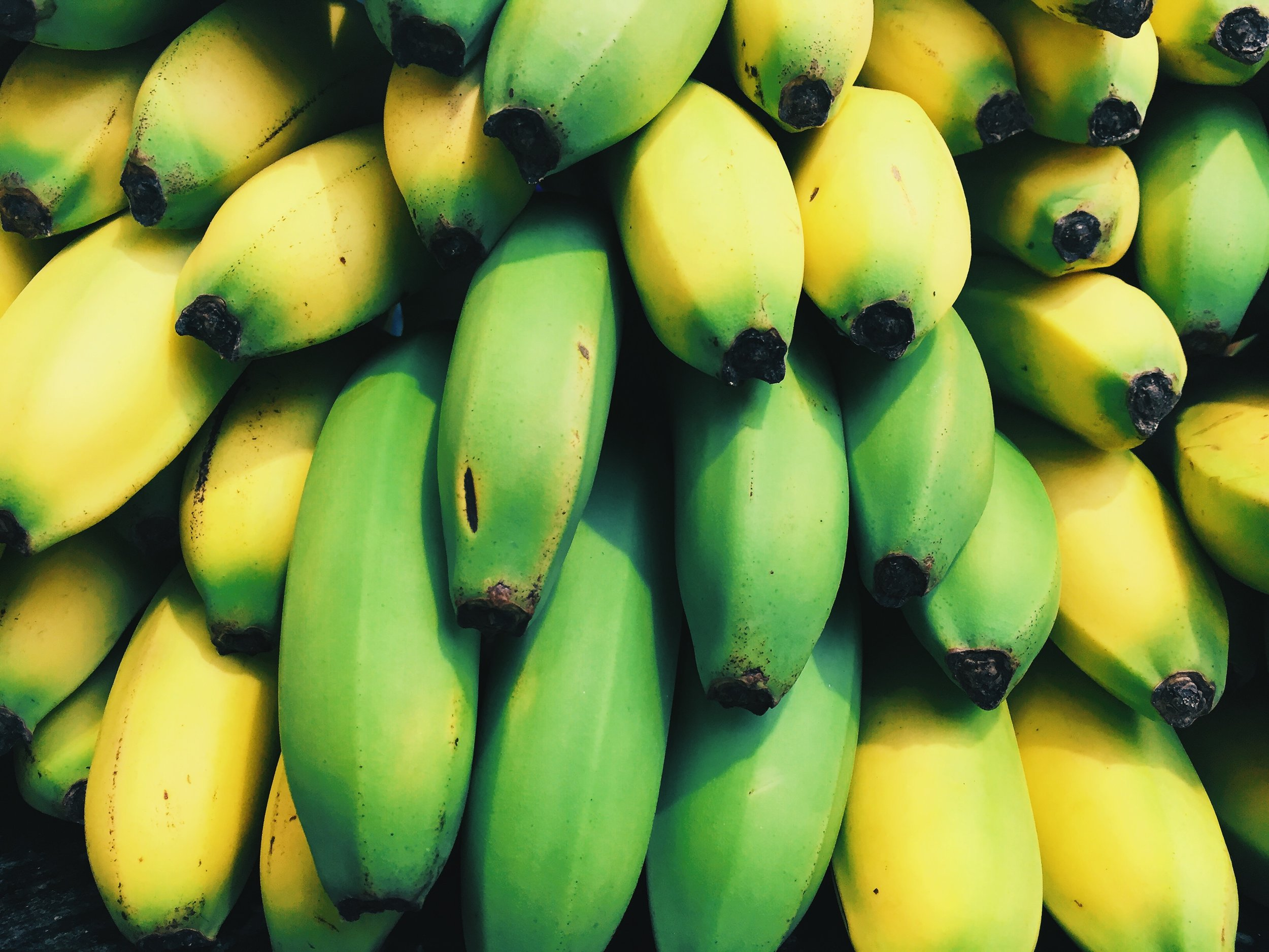 Turn bananas into a creamy dessert!