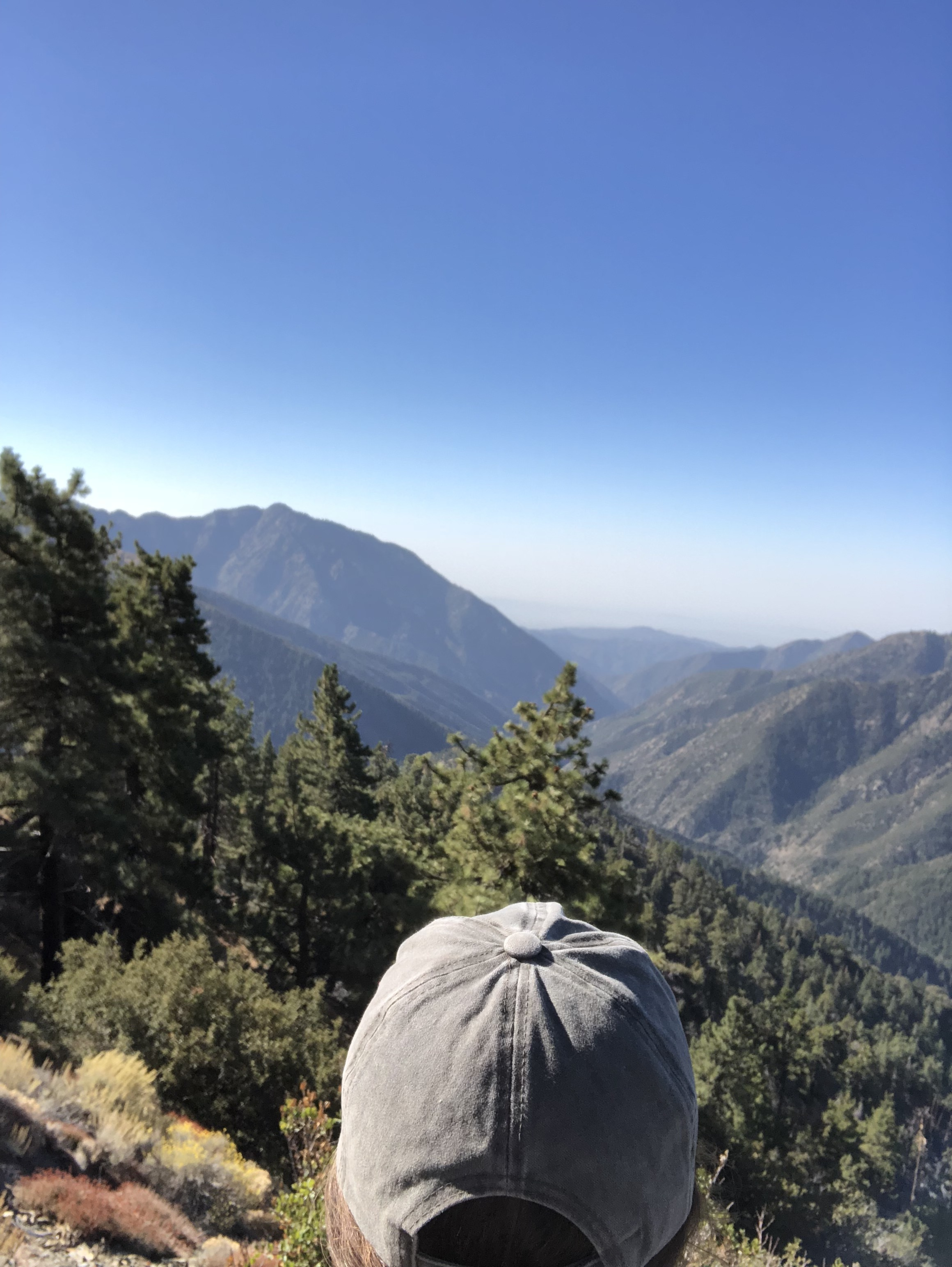 Inspiration Point  / Wrightwood, California U.S.A.