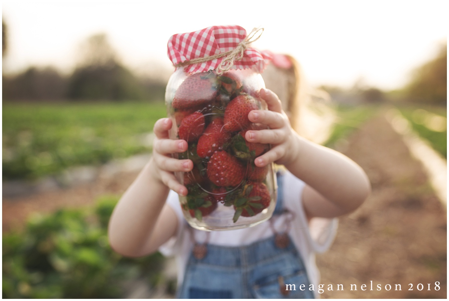 strawberry_patch_session_fort_worth_photographer09.jpg