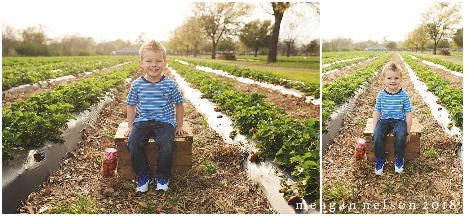 strawberry_patch_session_fort_worth_photographer21.jpg