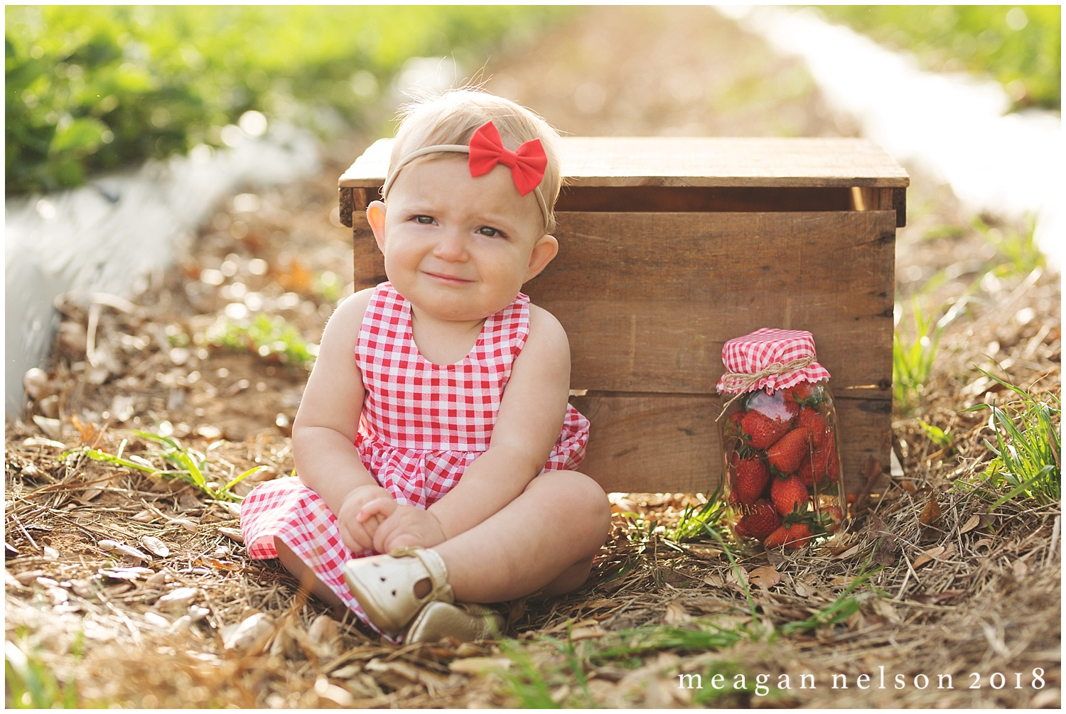 strawberry_patch_session_fort_worth_photographer25.jpg