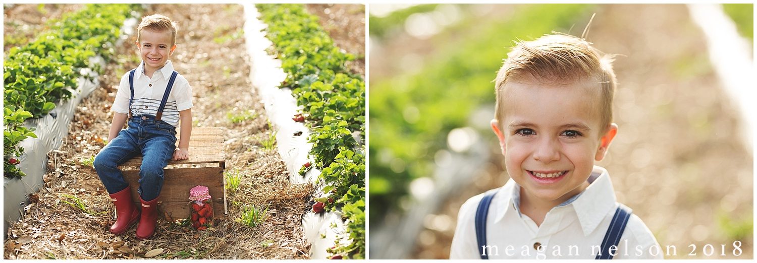 strawberry_patch_session_fort_worth_photographer27.jpg