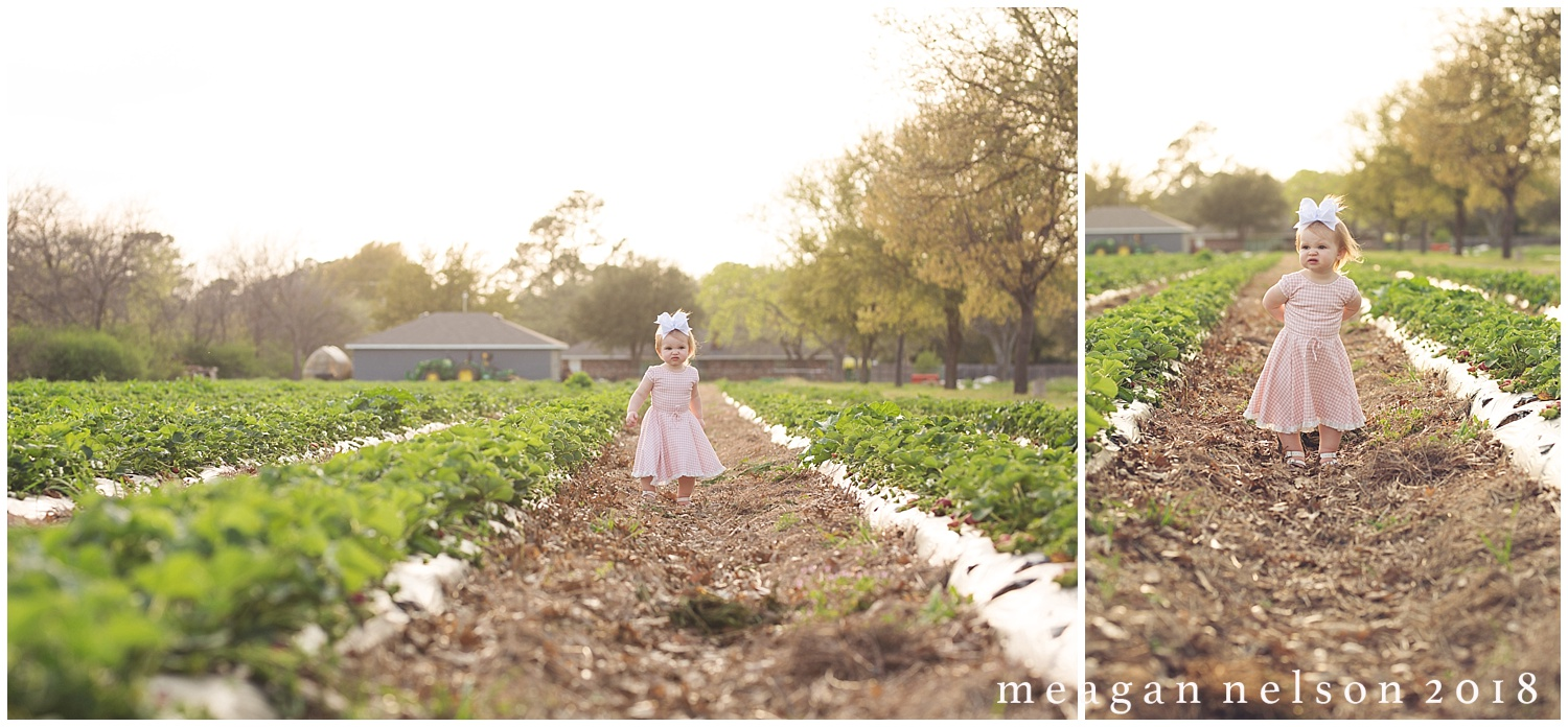 strawberry_patch_session_fort_worth_photographer46.jpg