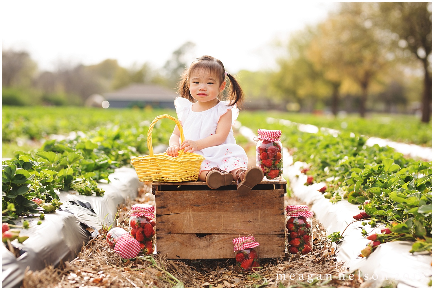 strawberry_patch_session_fort_worth_photographer52.jpg