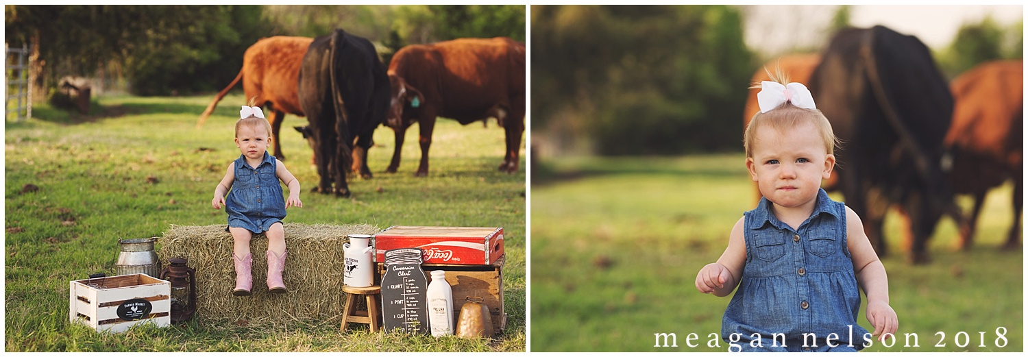 fort_worth_family_photographer_cow_mini_sessions007.jpg