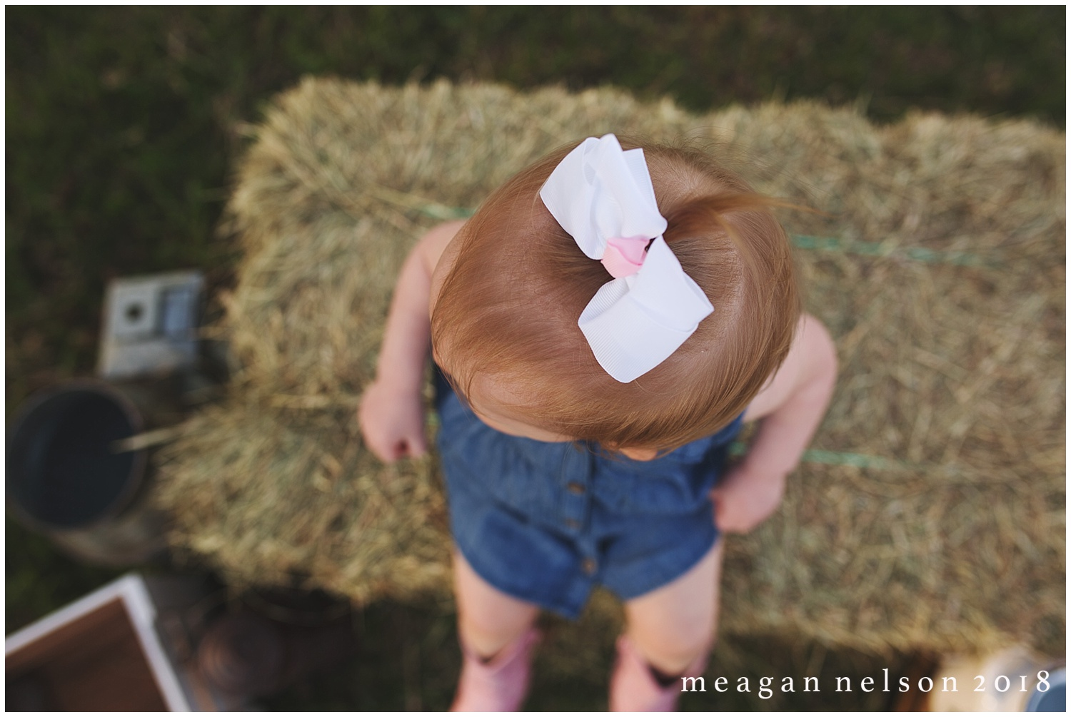 fort_worth_family_photographer_cow_mini_sessions010.jpg