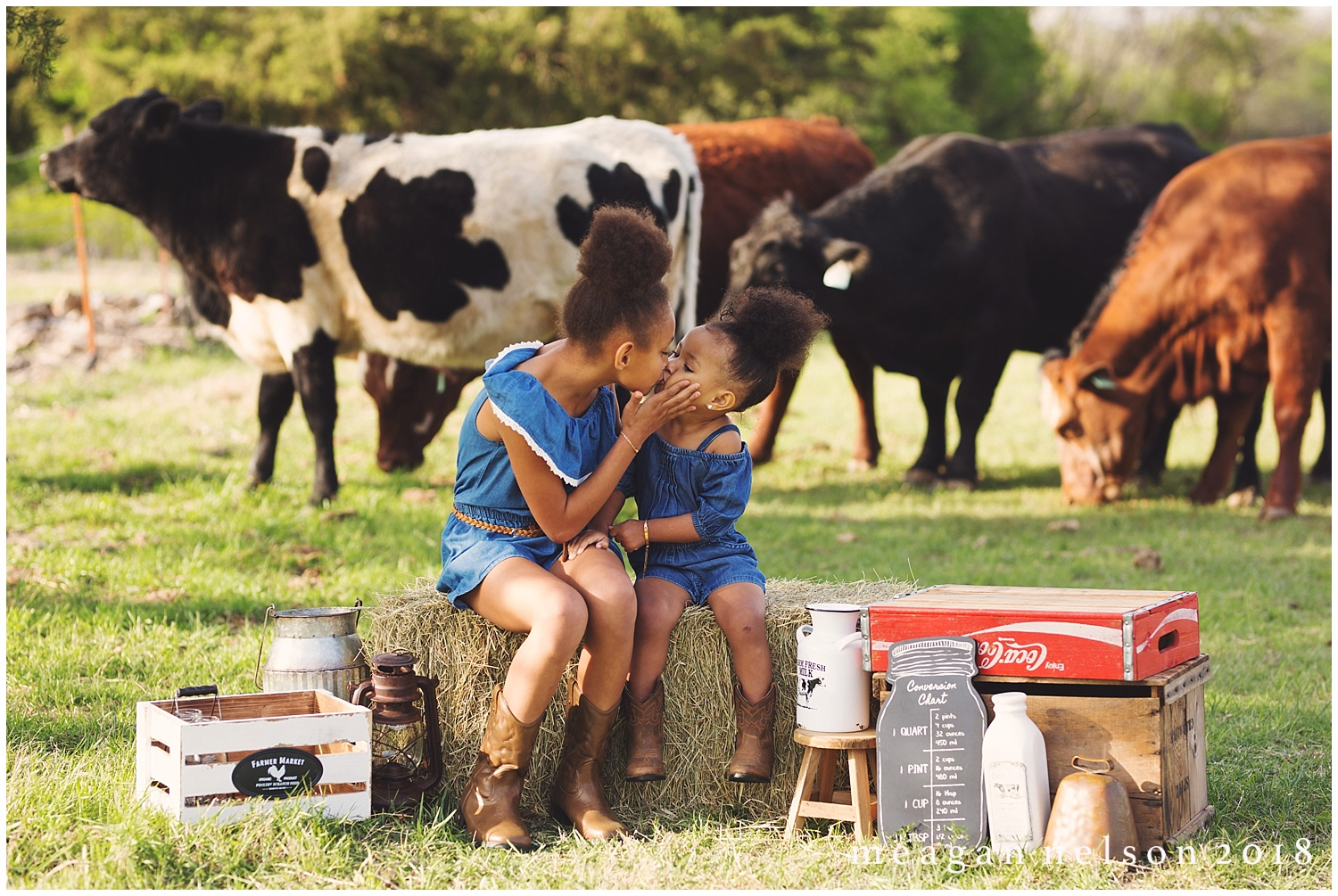 fort_worth_family_photographer_cow_mini_sessions016.jpg