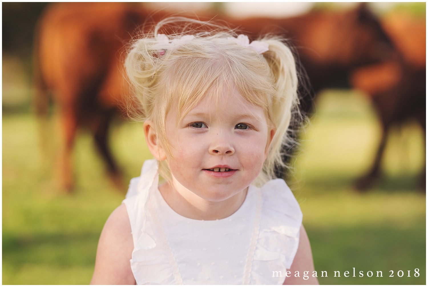 fort_worth_family_photographer_cow_mini_sessions024.jpg